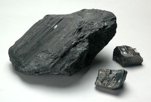 Coal samples