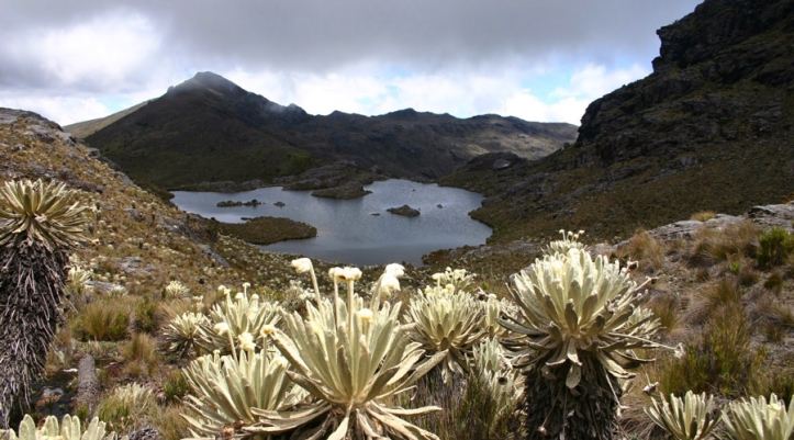 colombia-bans-mining-in-countrys-vast-alpine-tundra