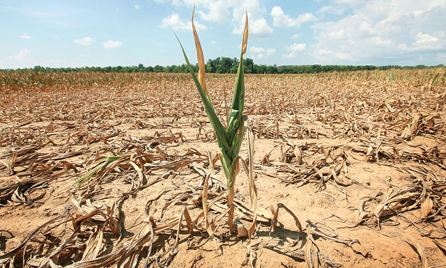 climate-original_072312-drought